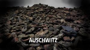 Auschwitz 1